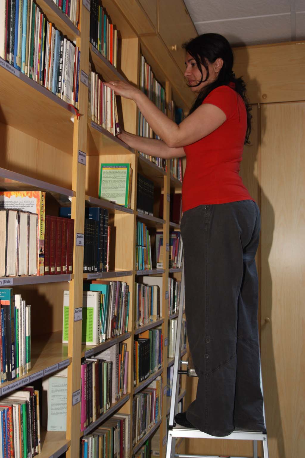 Organising the books in the library.